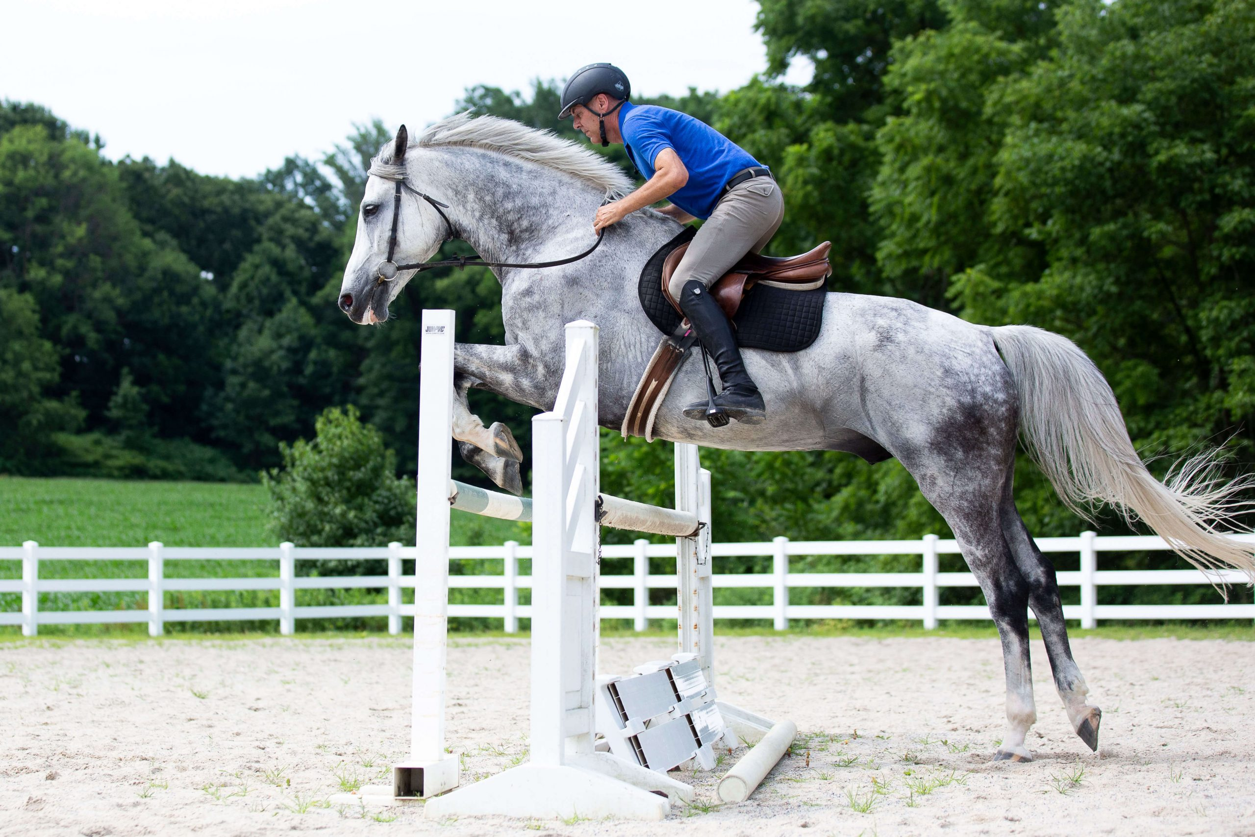 Solving Jumping Problems with Angelo Telatin